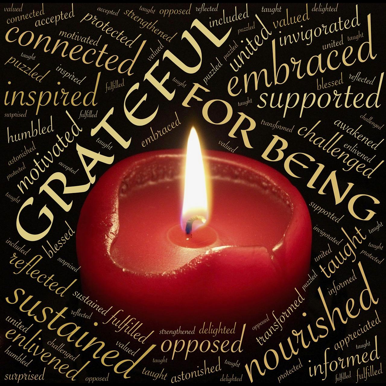 gratitude november
